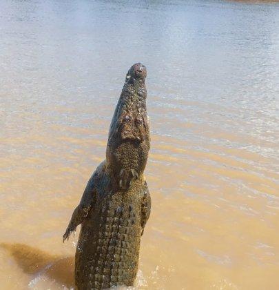 Darwin et ses environs dans la région Northern Territory en Australie