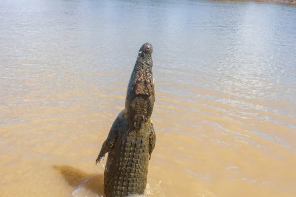 Darwin et ses environs dans le Northern Territory