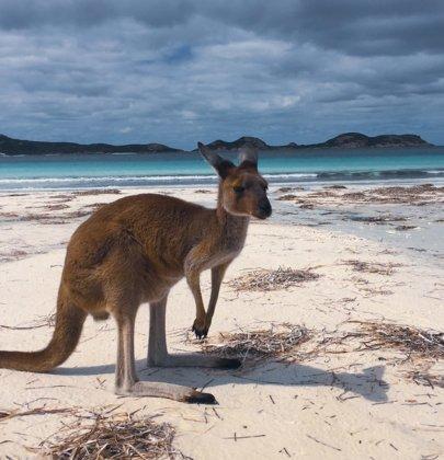 Cape Le Grand National Park dans le Western Australia en Australie
