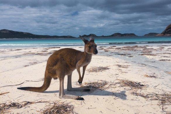 Cape Le Grand NP dans le Western Australia