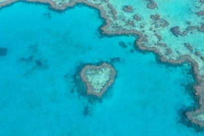 Survoler la Grande Barrière de Corail dans la région Queensland en Australie