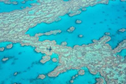 Australie : un voyage de rêve devenu réalité